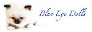 BlueEyeDolls Logo